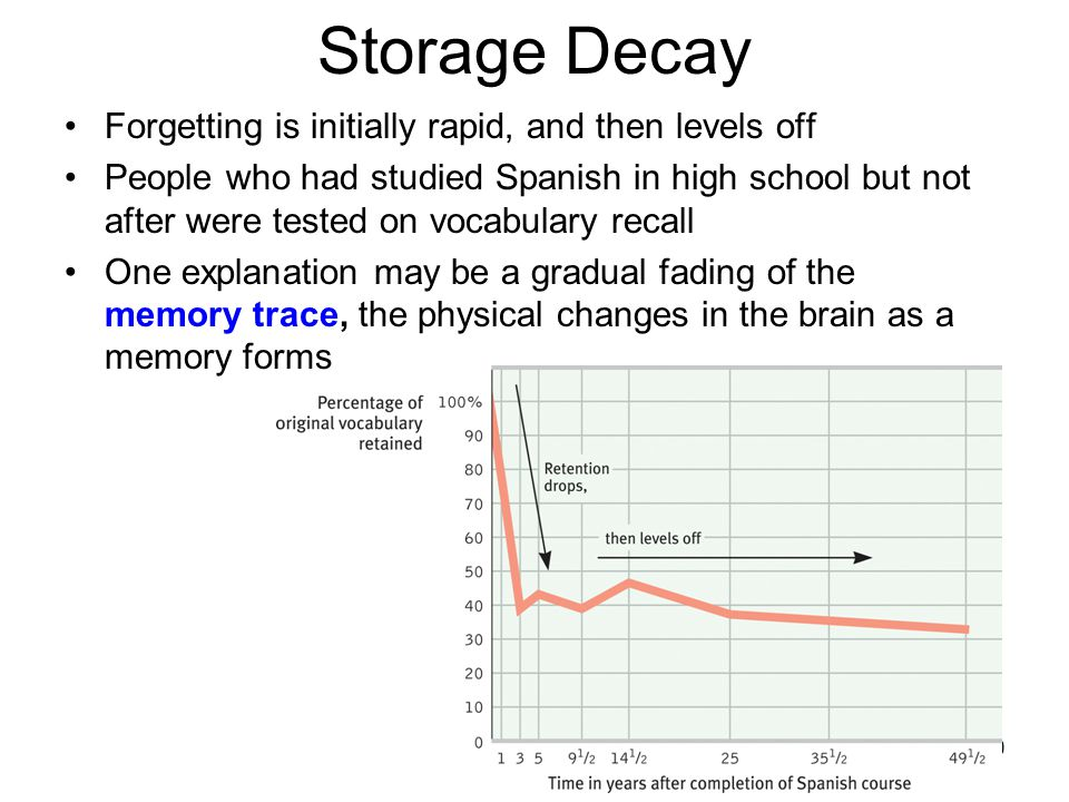Storage Decay Forgetting is initially rapid, and then levels off
