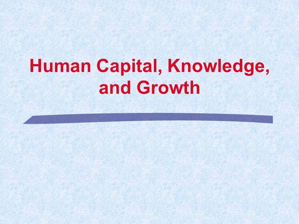 Human Capital, Knowledge, and Growth