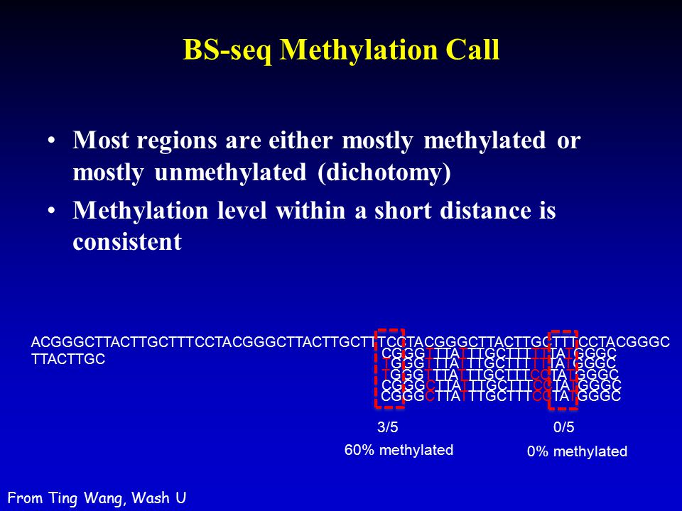 BS-seq Methylation Call