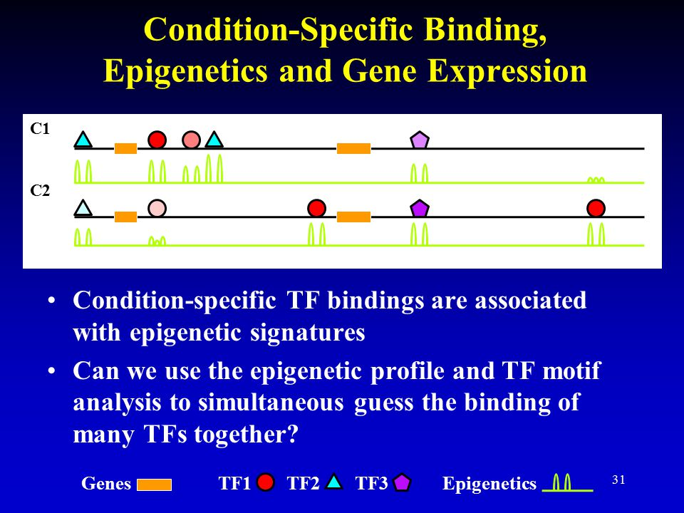 Condition-Specific Binding, Epigenetics and Gene Expression