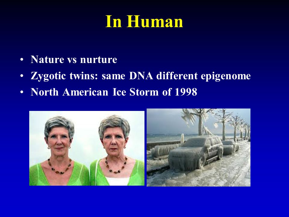 In Human Nature vs nurture Zygotic twins: same DNA different epigenome