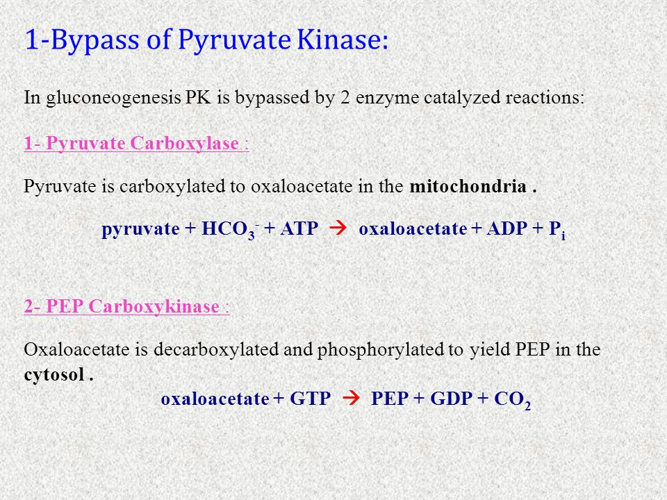 1-Bypass of Pyruvate Kinase: