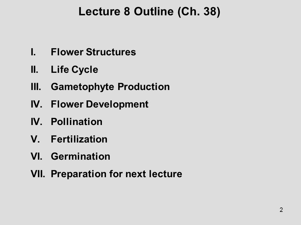 Lecture 8 Outline (Ch. 38) I. Flower Structures II. Life Cycle
