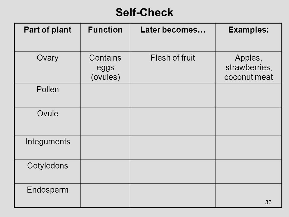Self-Check Part of plant Function Later becomes… Examples: Ovary