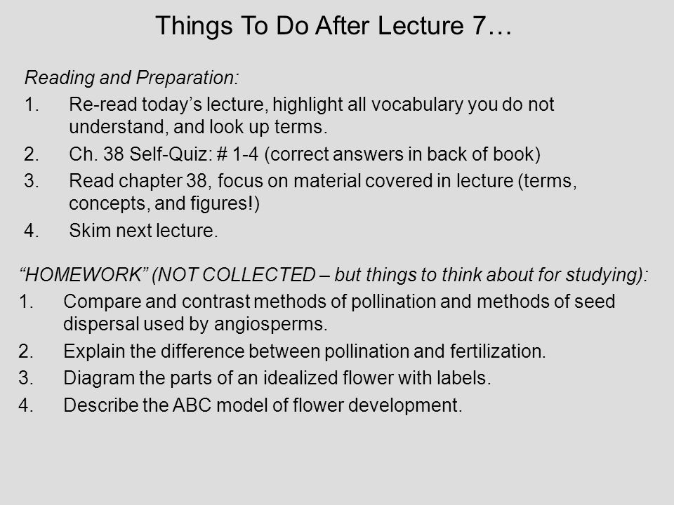 Things To Do After Lecture 7…