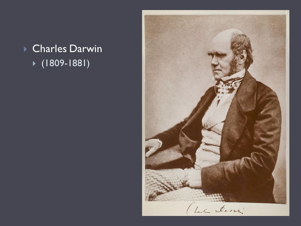 Charles Darwin (1809-1881) Picture c. 1854