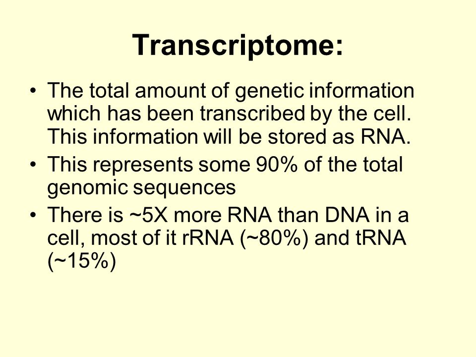 Transcriptome: The total amount of genetic information which has been transcribed by the cell. This information will be stored as RNA.