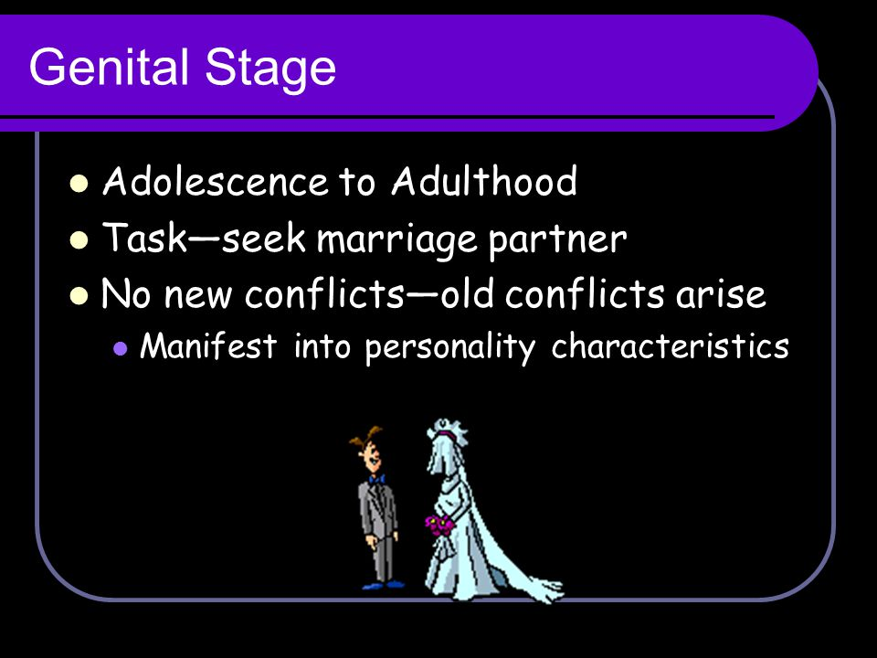 Genital Stage Adolescence to Adulthood Task—seek marriage partner