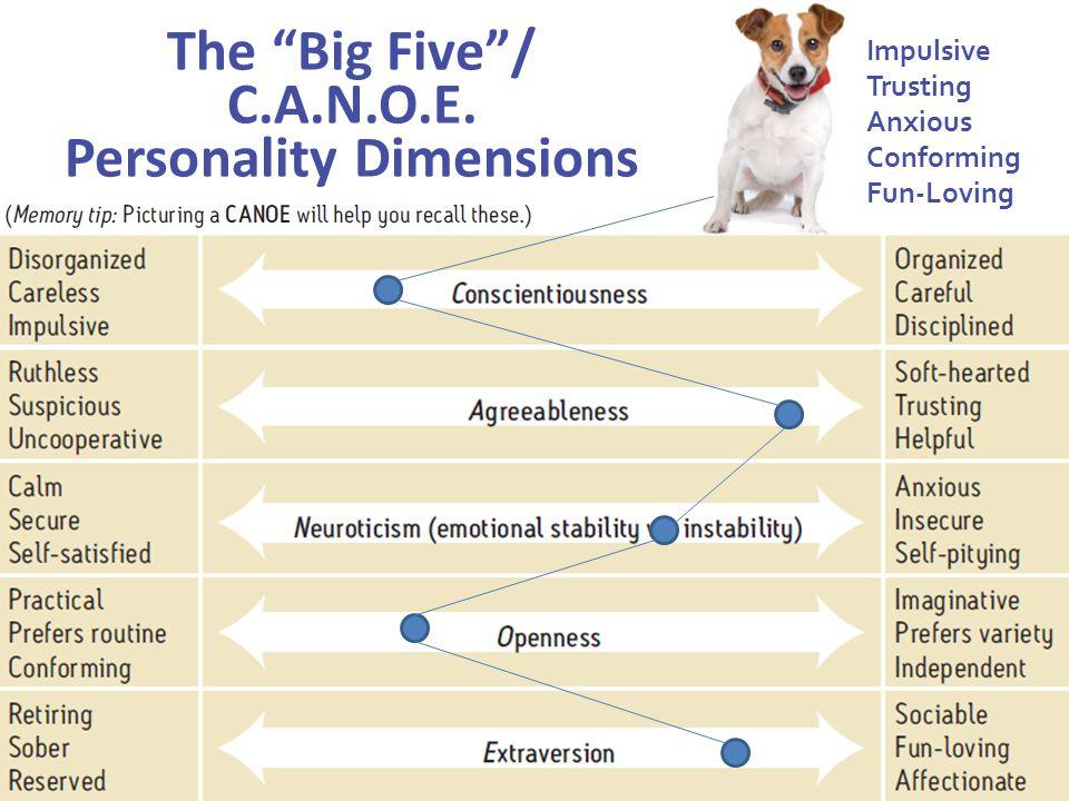 The Big Five / C.A.N.O.E. Personality Dimensions