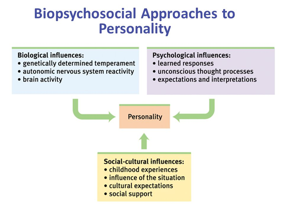 Biopsychosocial Approaches to Personality