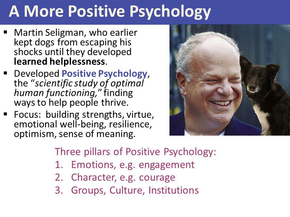 A More Positive Psychology