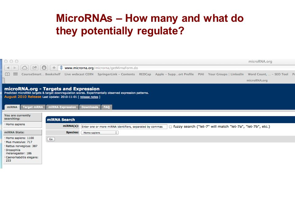 MicroRNAs – How many and what do they potentially regulate