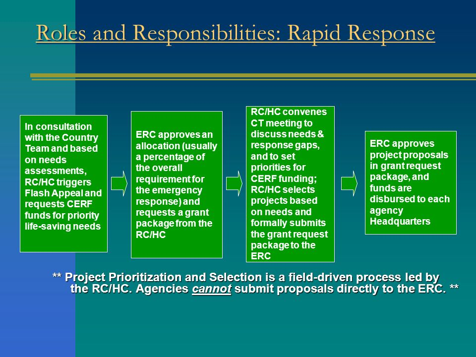 Roles and Responsibilities: Rapid Response