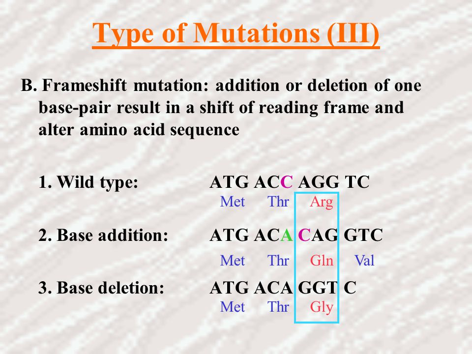 Type of Mutations (III)