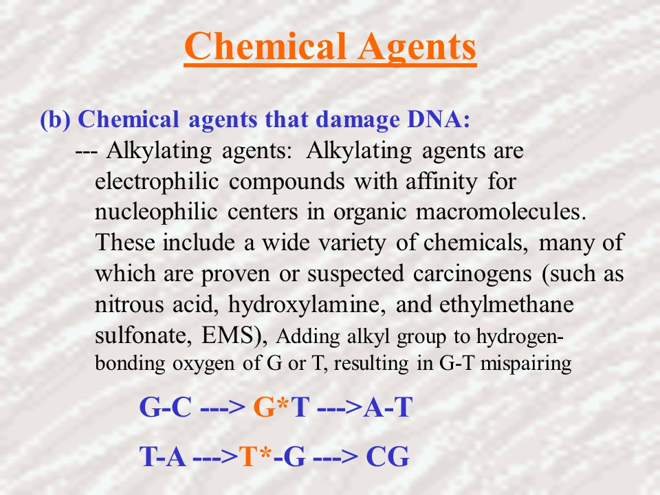 Chemical Agents G-C ---> G*T --->A-T T-A --->T*-G ---> CG