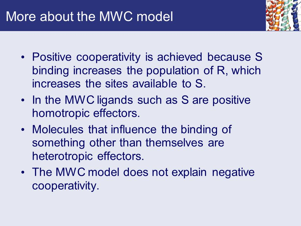 More about the MWC model