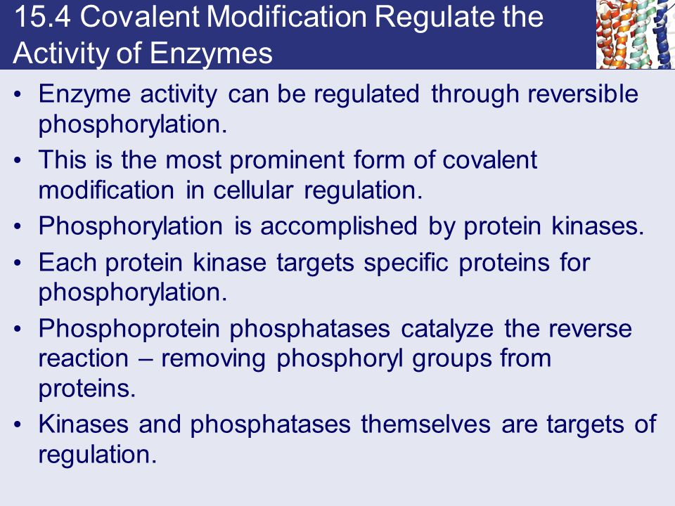15.4 Covalent Modification Regulate the Activity of Enzymes