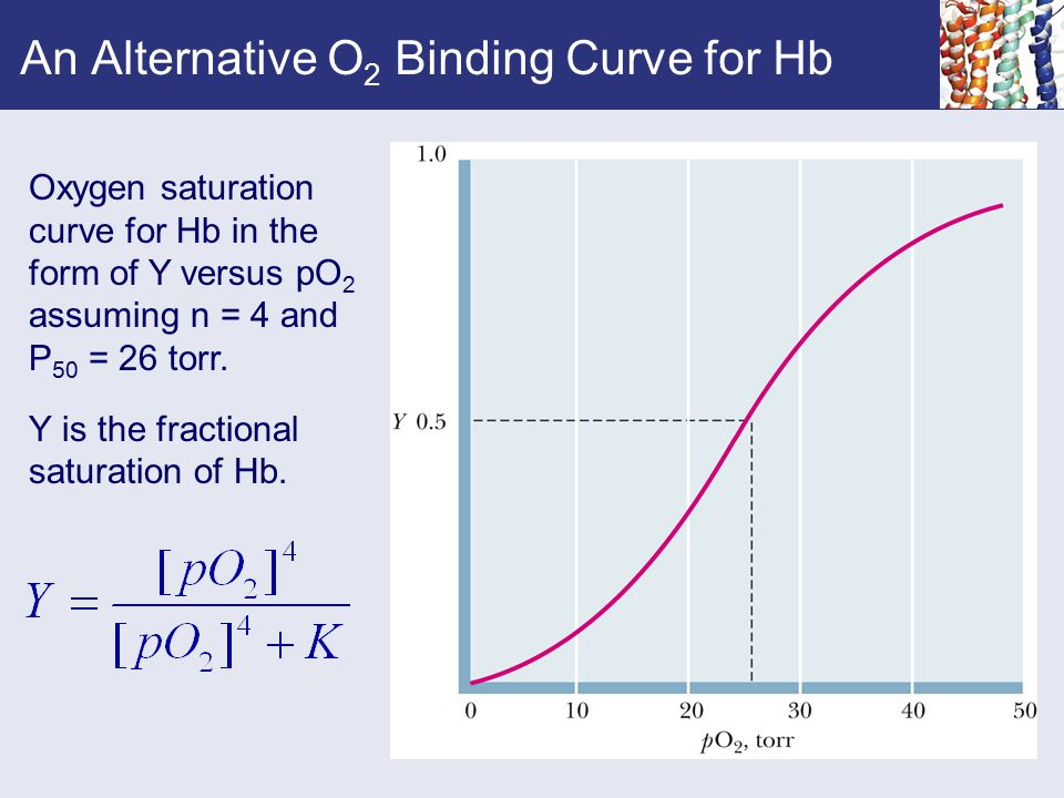An Alternative O2 Binding Curve for Hb