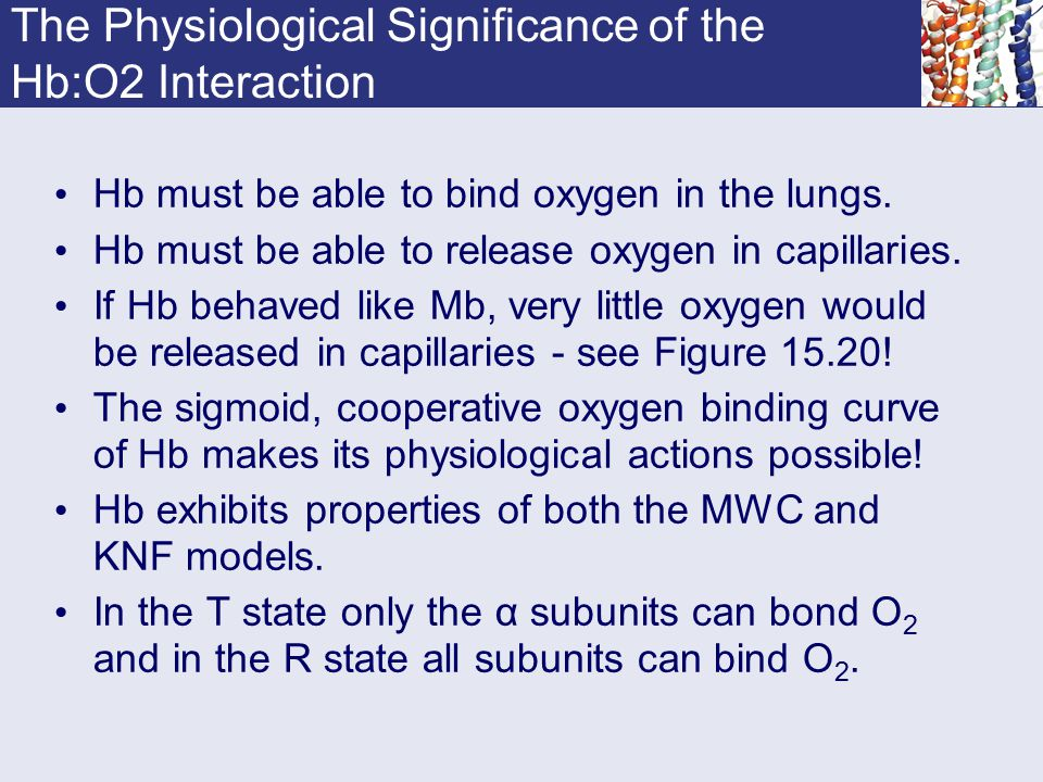 The Physiological Significance of the Hb:O2 Interaction