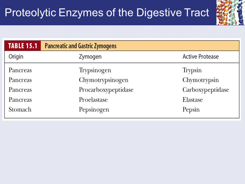 Proteolytic Enzymes of the Digestive Tract