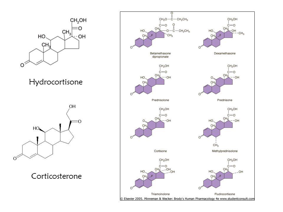 Hydrocortisone Corticosterone