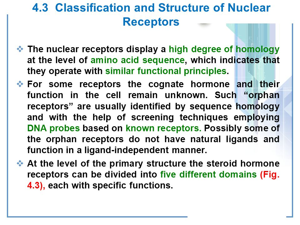 4.3 Classification and Structure of Nuclear Receptors