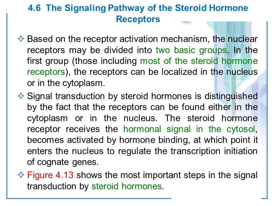 4.6 The Signaling Pathway of the Steroid Hormone Receptors
