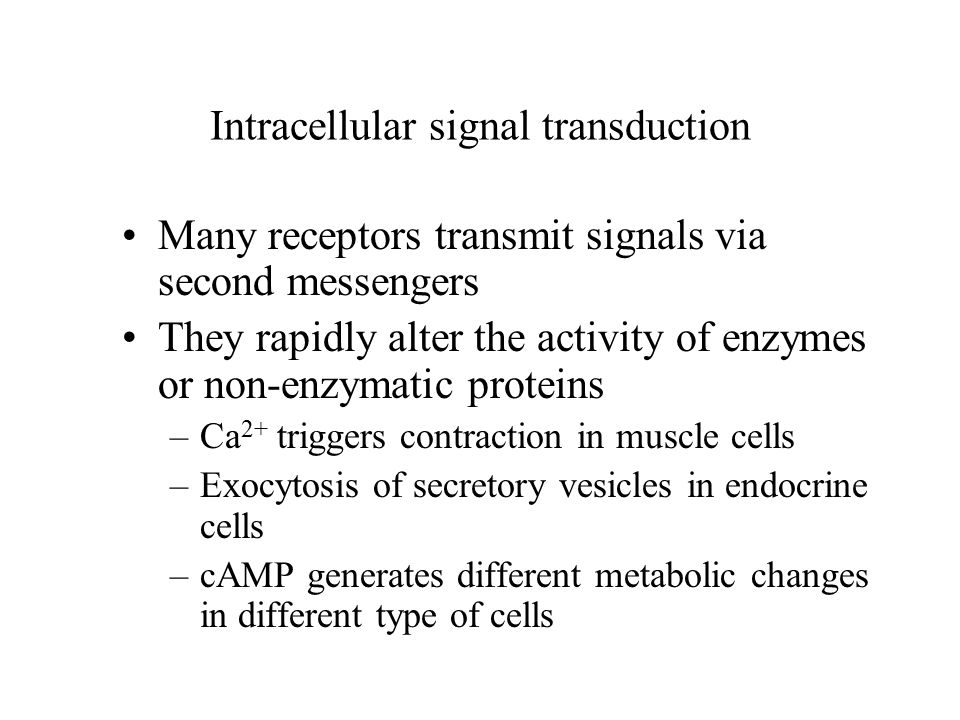 Intracellular signal transduction