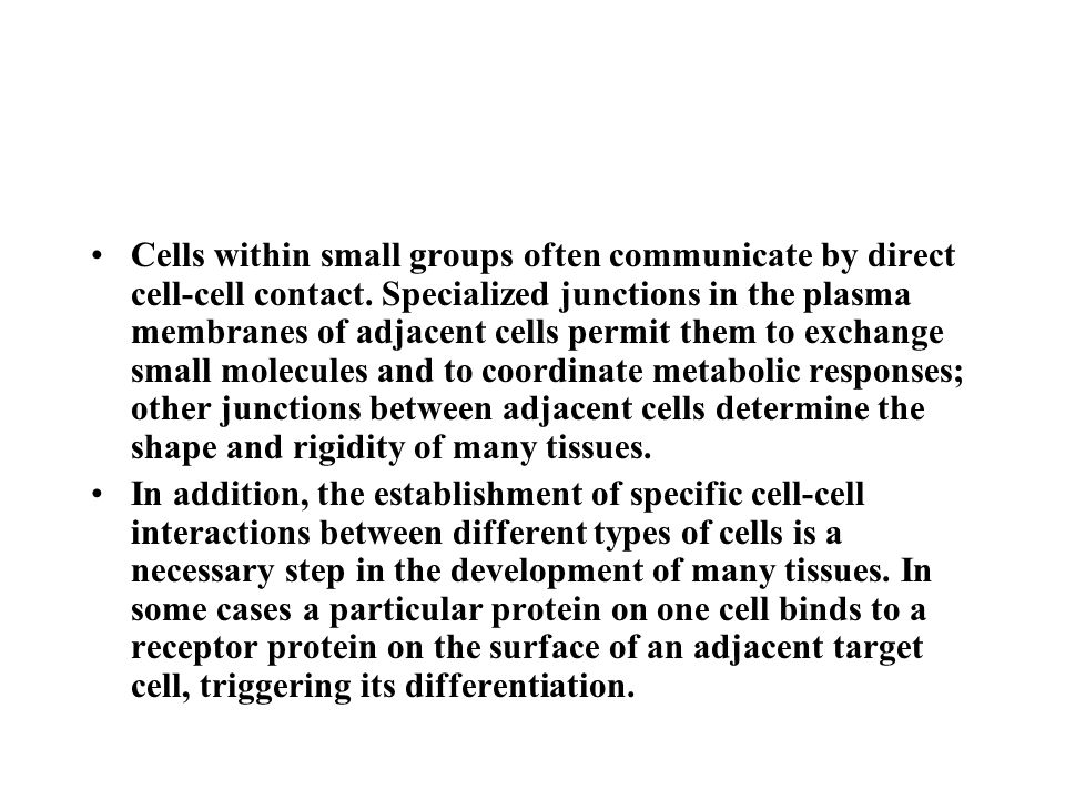Cells within small groups often communicate by direct cell-cell contact. Specialized junctions in the plasma membranes of adjacent cells permit them to exchange small molecules and to coordinate metabolic responses; other junctions between adjacent cells determine the shape and rigidity of many tissues.