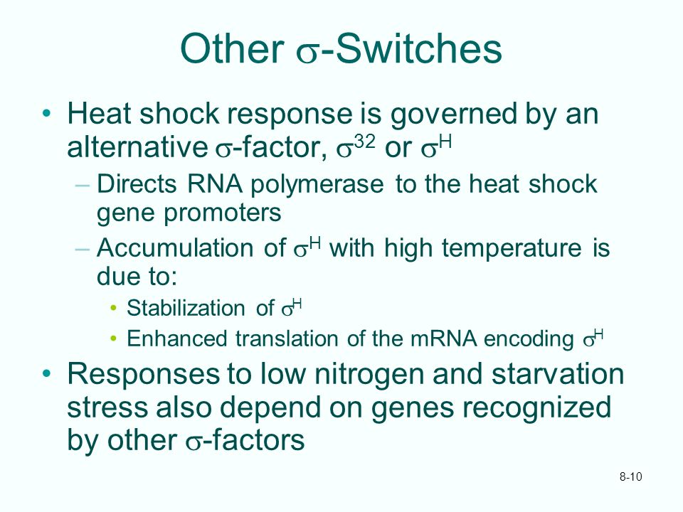 Other s-Switches Heat shock response is governed by an alternative s-factor, s32 or sH. Directs RNA polymerase to the heat shock gene promoters.