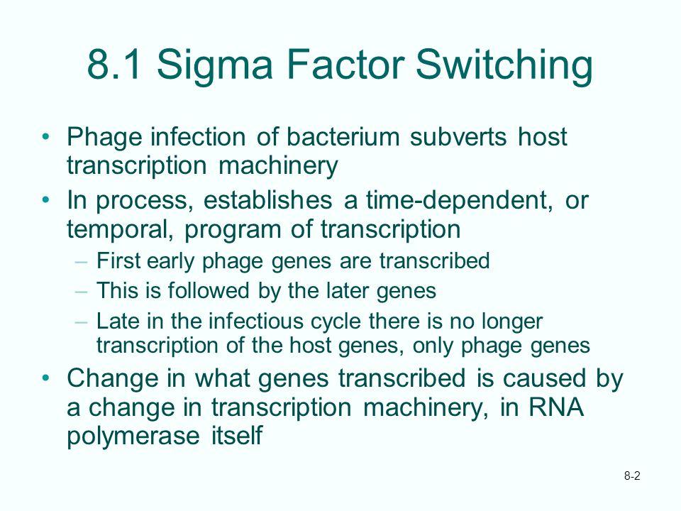 8.1 Sigma Factor Switching