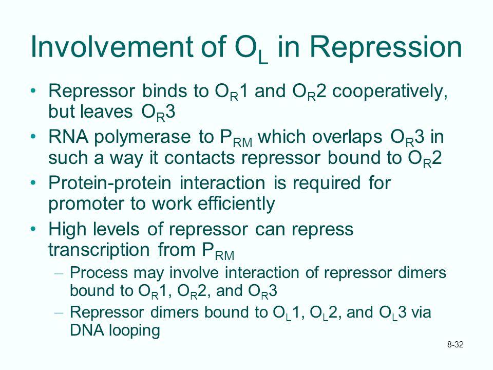 Involvement of OL in Repression