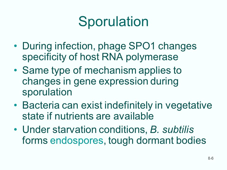 Sporulation During infection, phage SPO1 changes specificity of host RNA polymerase.