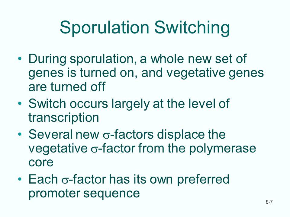Sporulation Switching
