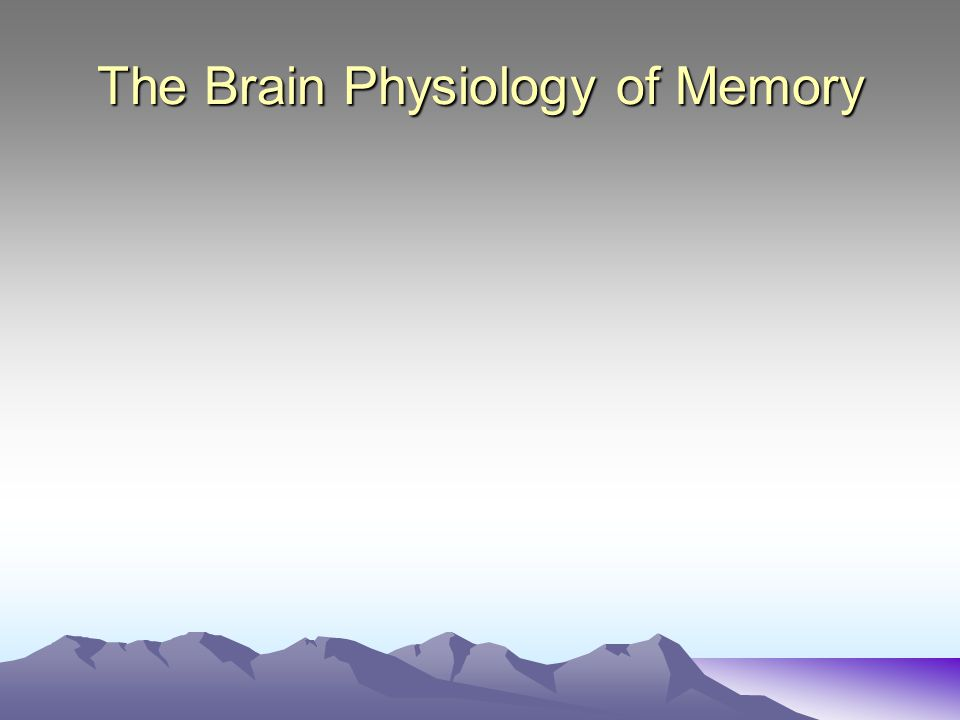 The Brain Physiology of Memory