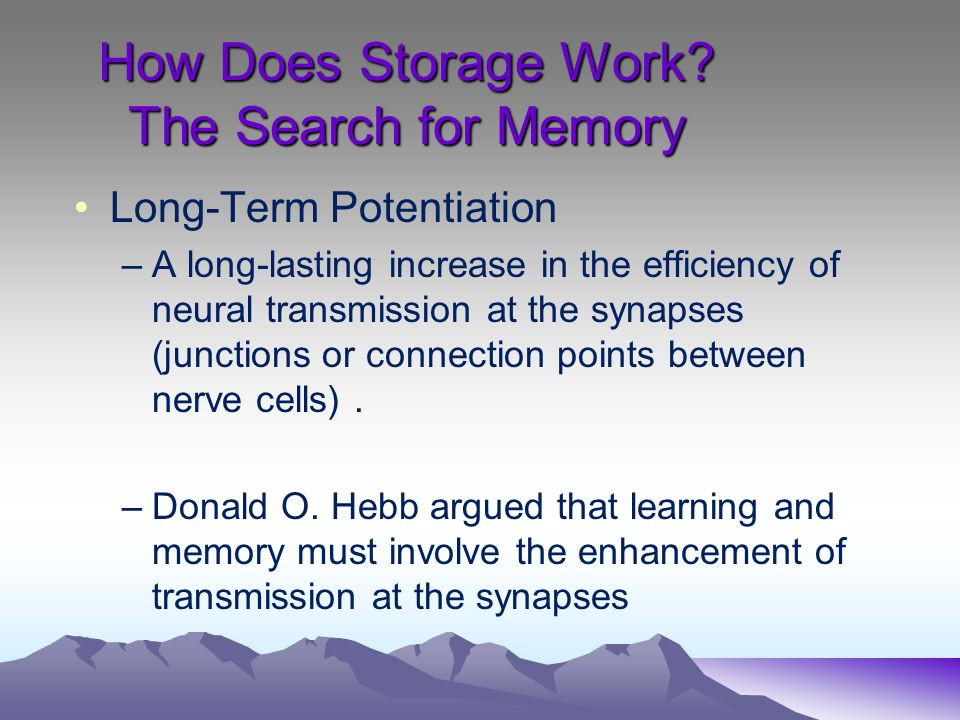How Does Storage Work The Search for Memory