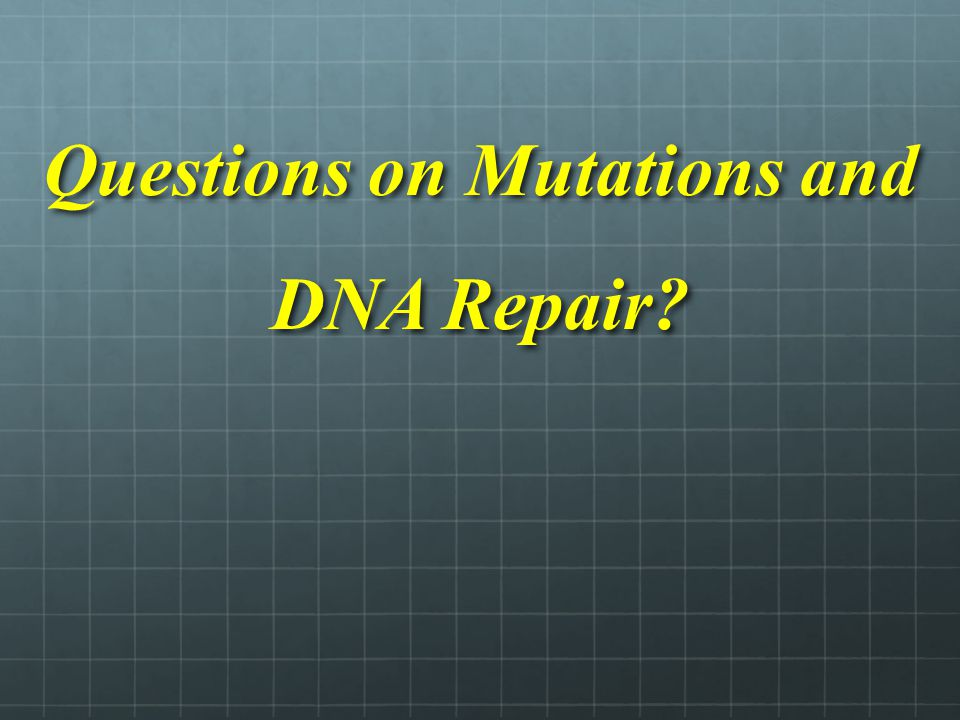 Questions on Mutations and DNA Repair