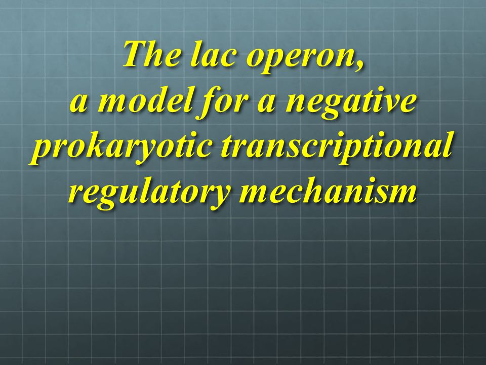 The lac operon, a model for a negative prokaryotic transcriptional regulatory mechanism