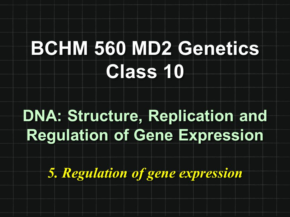 BCHM 560 MD2 Genetics Class 10 DNA: Structure, Replication and Regulation of Gene Expression 5.