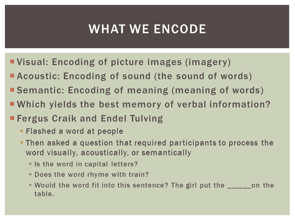 What We Encode Visual: Encoding of picture images (imagery)
