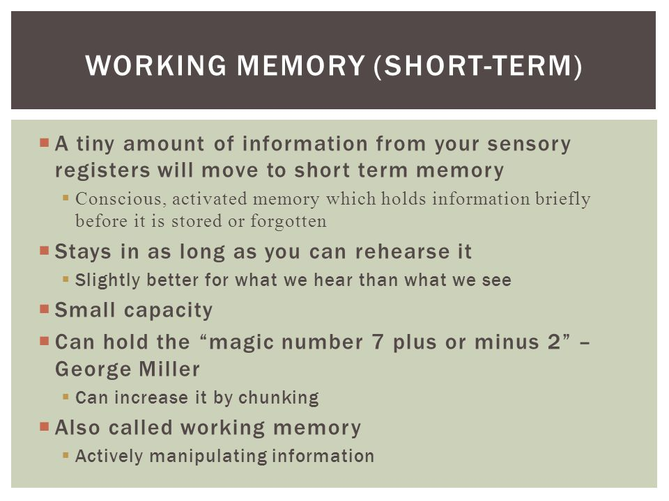 Working Memory (Short-Term)