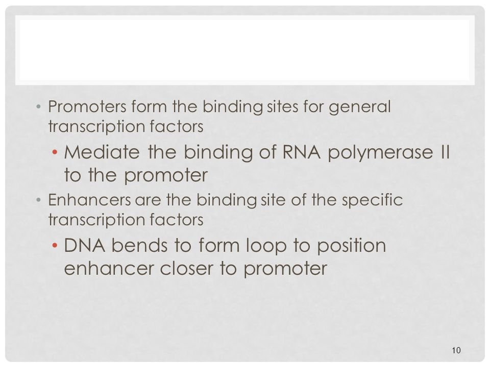 Mediate the binding of RNA polymerase II to the promoter