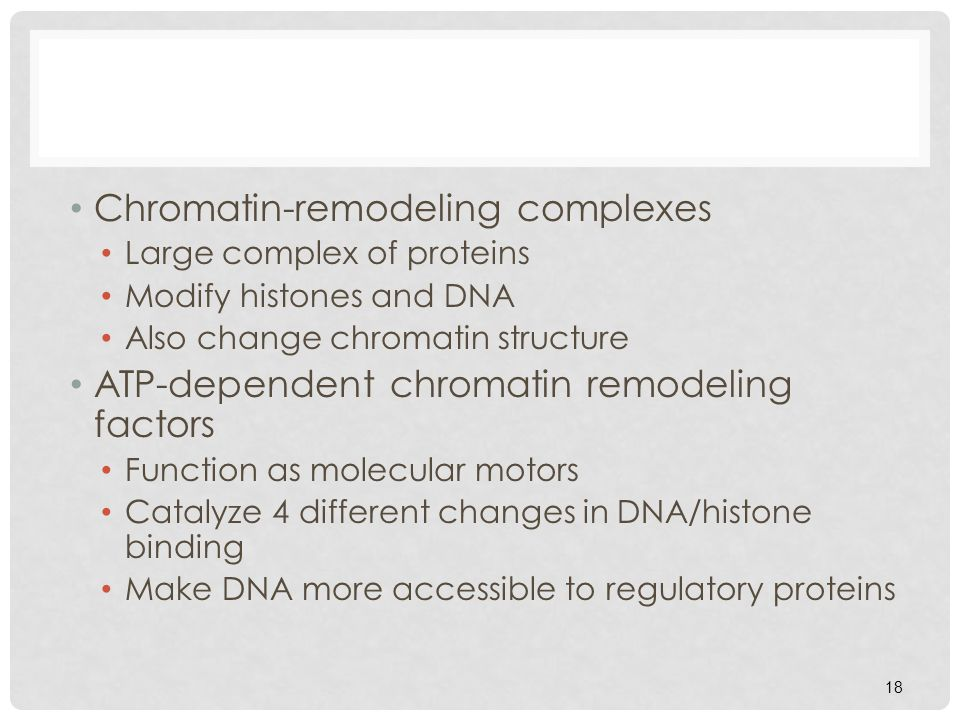 Chromatin-remodeling complexes