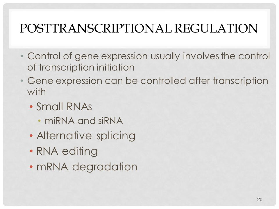 Posttranscriptional Regulation