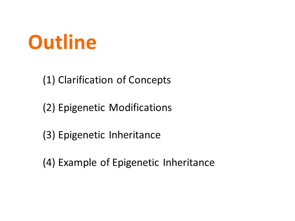 Outline (1) Clarification of Concepts (2) Epigenetic Modifications