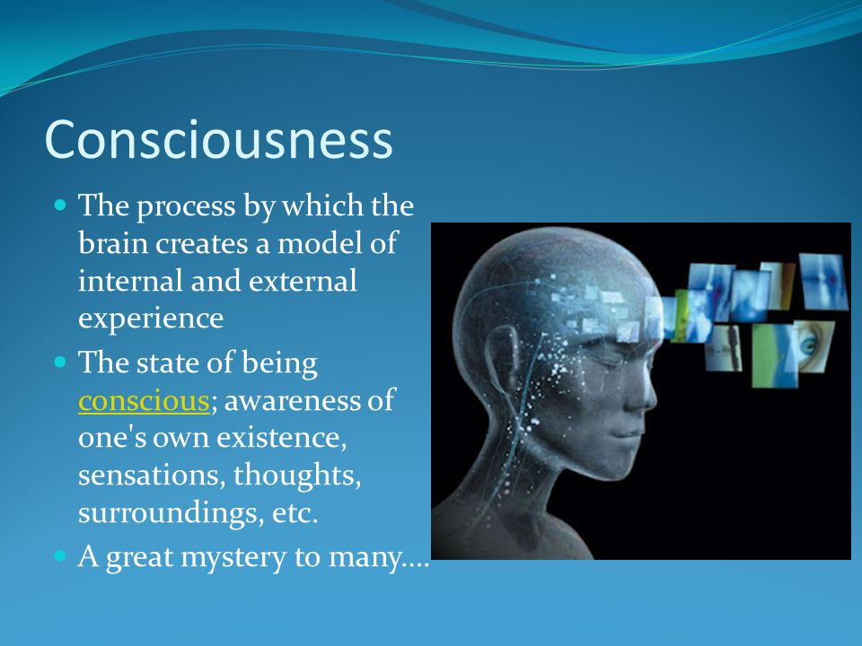 Consciousness The process by which the brain creates a model of internal and external experience.