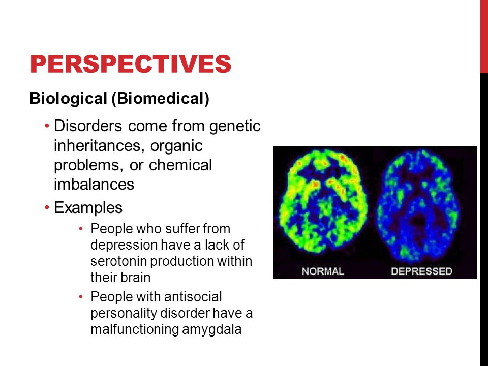 Perspectives Biological (Biomedical)