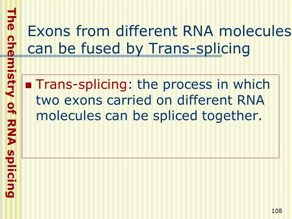 Exons from different RNA molecules can be fused by Trans-splicing