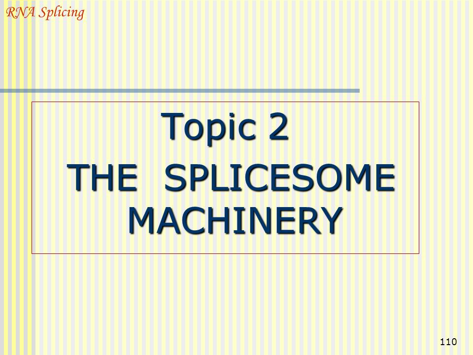 THE SPLICESOME MACHINERY