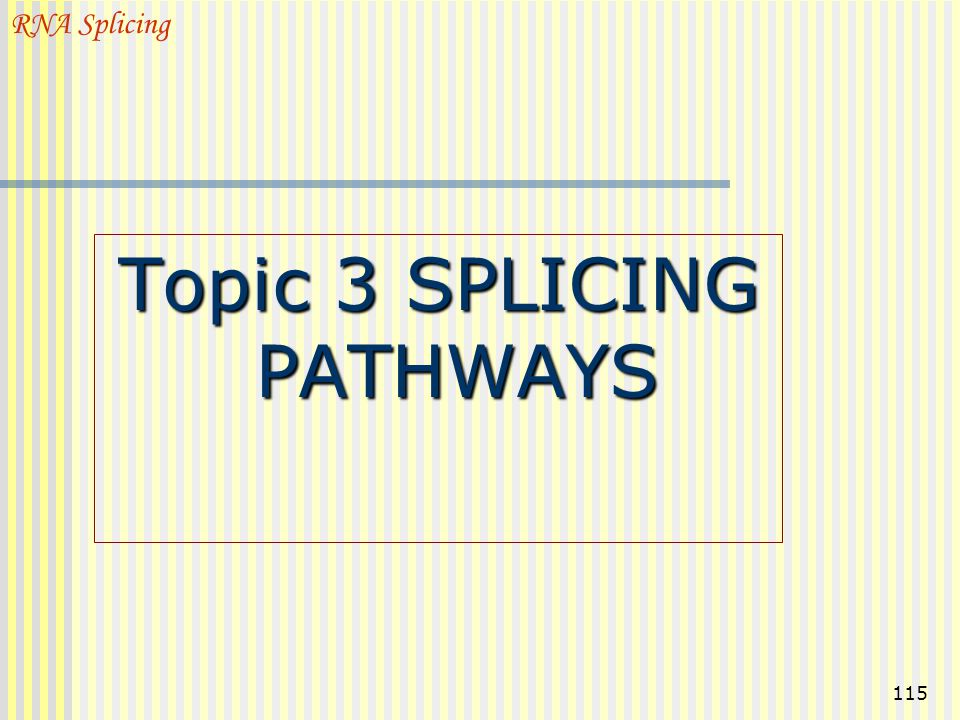 Topic 3 SPLICING PATHWAYS